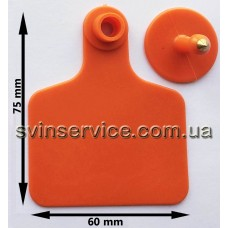 Ушная бирка 60ммX75мм оранжевая б/номера для КРС и свиноматок с металлическим наконечником