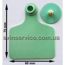 Ушная бирка 60ммX75мм б/номера зеленая для КРС и свиноматок с металлическим наконечником