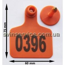 Ушная бирка 60ммX75мм оранжевая с номером для КРС и свиноматок с металлическим наконечником